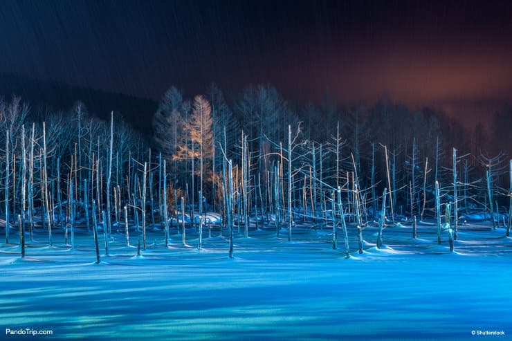 The Blue Pond during winter at night. Biei, Hokkaido, Japan