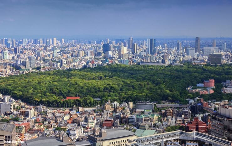 Aerial view of Yoyogi Park in Tokyo