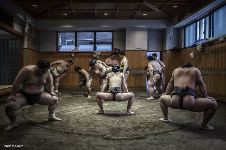 Stretching session before a training in local sumo stable