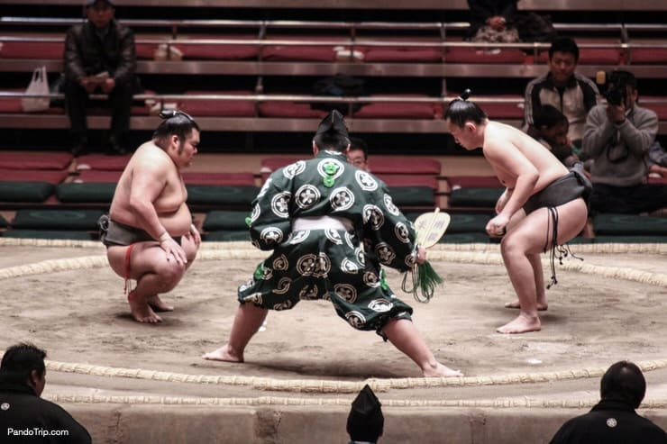 Sumo wrestlers in the Tokyo Grand Sumo Tournament