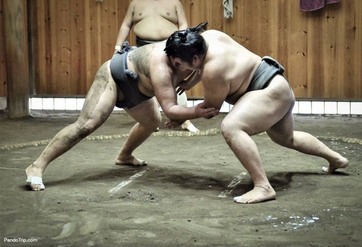 Sumo wrestlers training in sumo stable