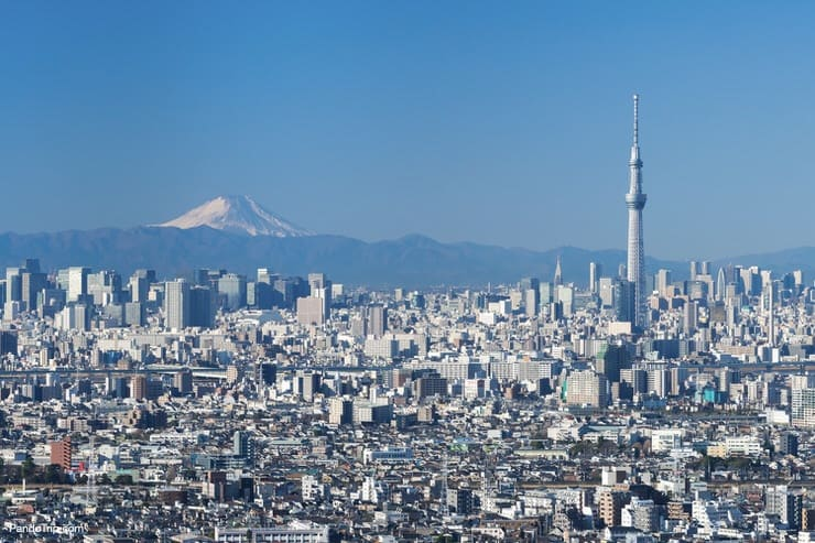 View of Mount Fuji and Tokyo Skytree from the Tokyo Metropolitan Government building