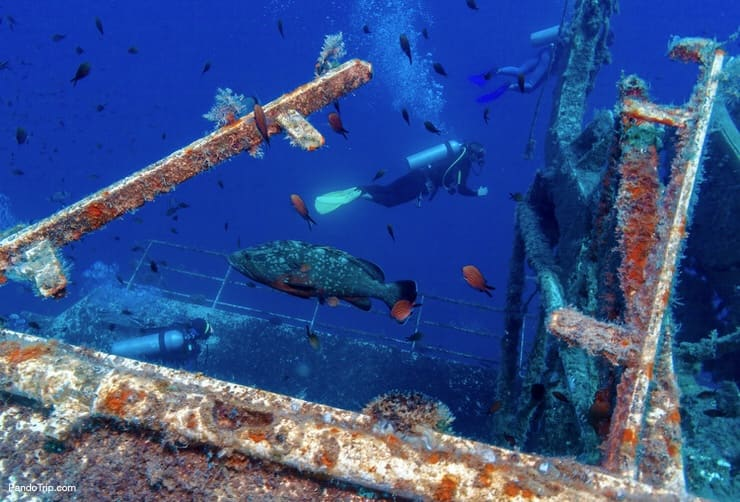 The Wreck of Zenobia is one of the world's best diving sites