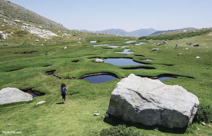 The wet plateau I Pozzi, covered with small lakes and green fields in Corsica, France