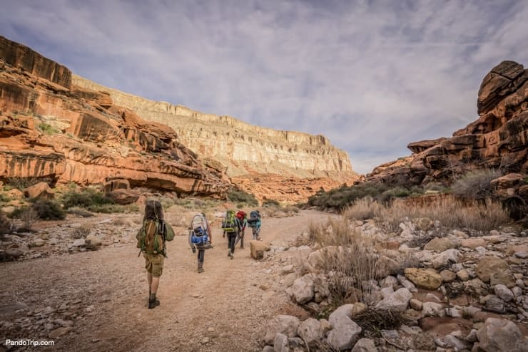 Group of hikers going to Havasu Falls